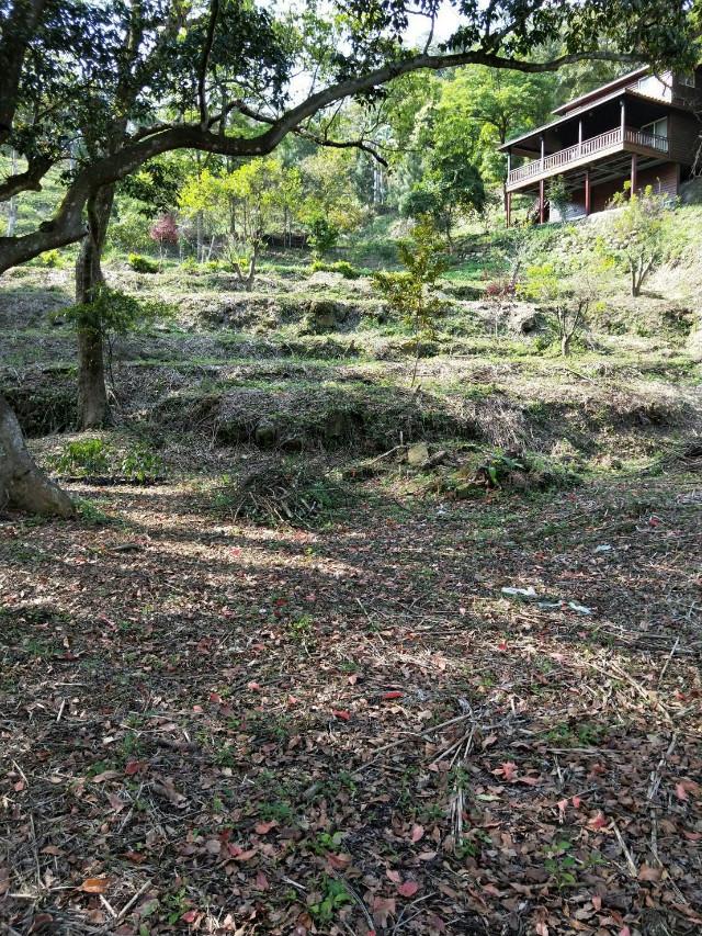久福農莊農地,新竹縣峨眉鄉石硬子段石硬子小段