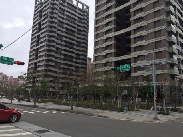 廣豐二期4房雙車景觀戶11F,桃園市八德區公園路